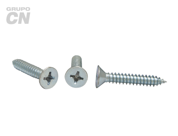 Pija cabeza plana embutida phillips cuerda tipo AB #10 (4.7mm) 16 hilos