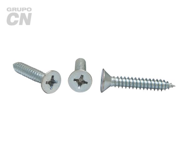 Pija cabeza plana embutida phillips cuerda tipo AB #14 (6.3mm) 14 hilos