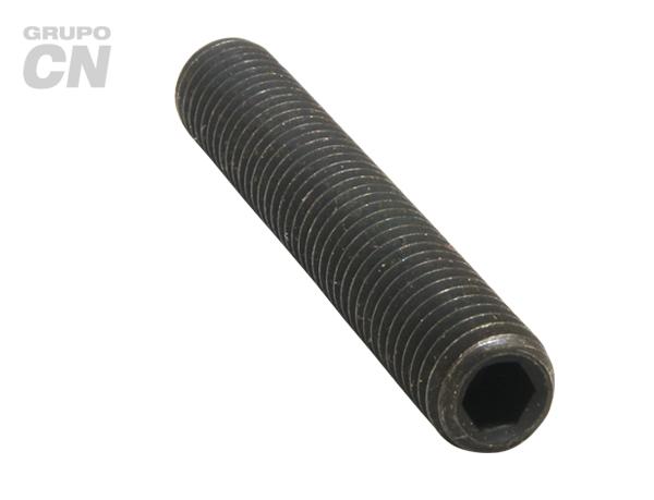 Opresor con hexágono interior punta copa cuerda métrica DIN-916 tipo ALLEN M 5 paso 0.80